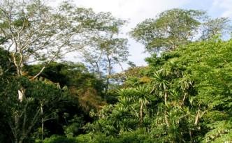 Ecological Legislation