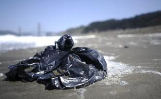 Plastic bags - A plague